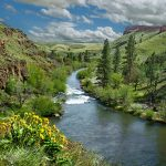 Ranches and rivers and rivers of money