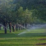 Sprinklers and Insurance